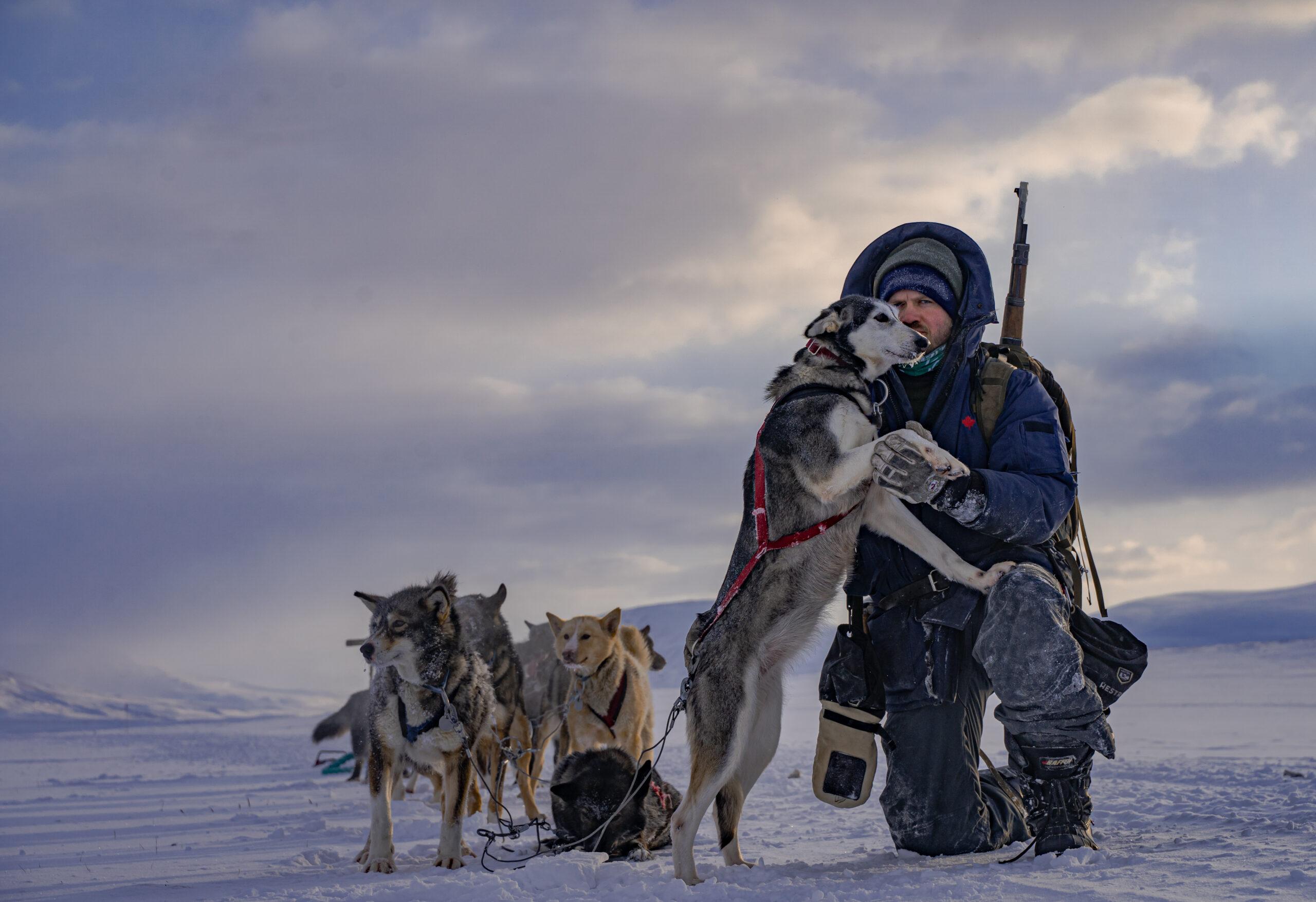 jan hvizdal dogs sledging